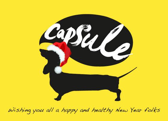 capsule_logo_xmas